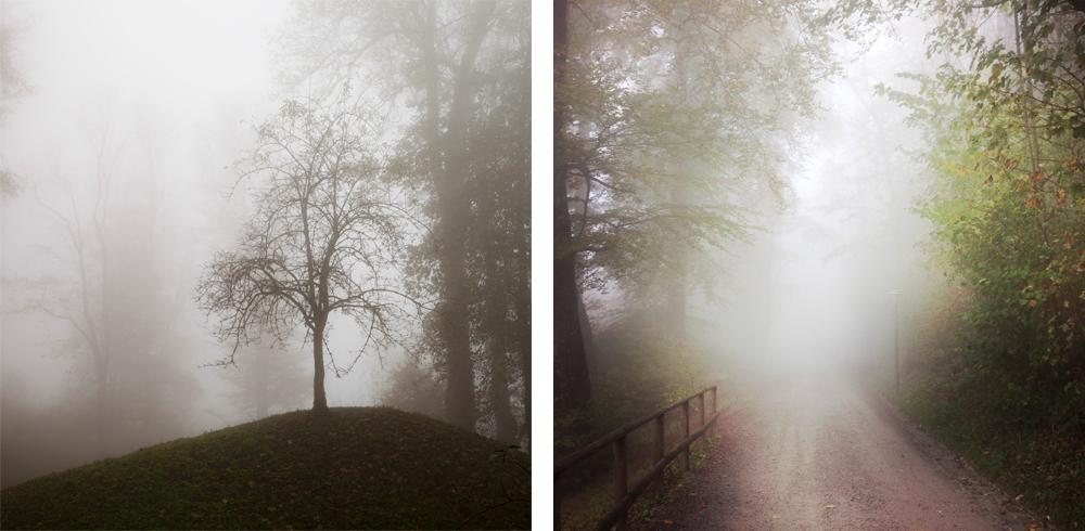 Fog-Nadine_Mojado_3