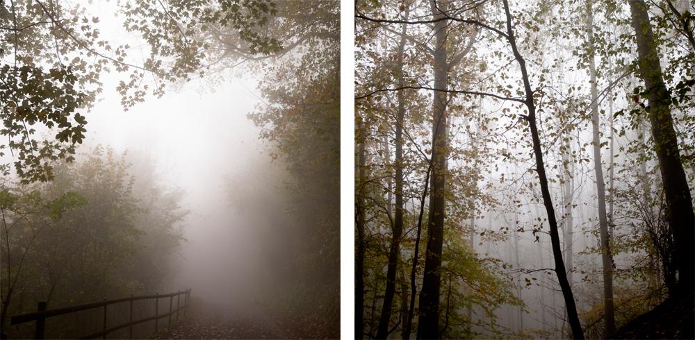 Fog-Nadine_Mojado_5