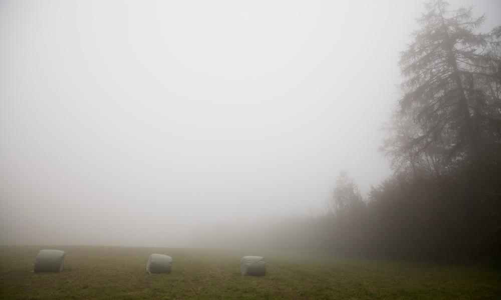 Fog-Nadine_Mojado_6