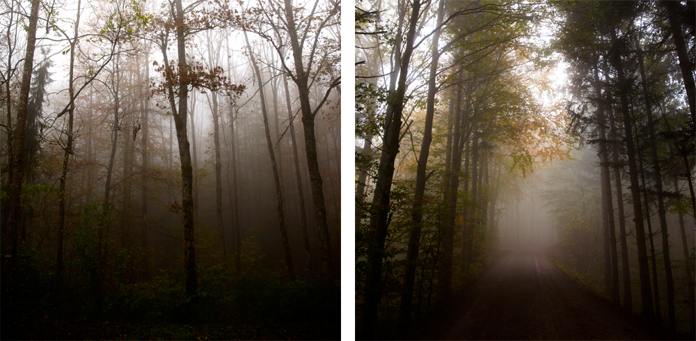 Fog-Nadine_Mojado_8
