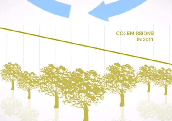 ANIMATED SUSTAINABILITY REPORT